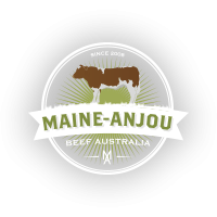 Maine-Anjou Beef Australia